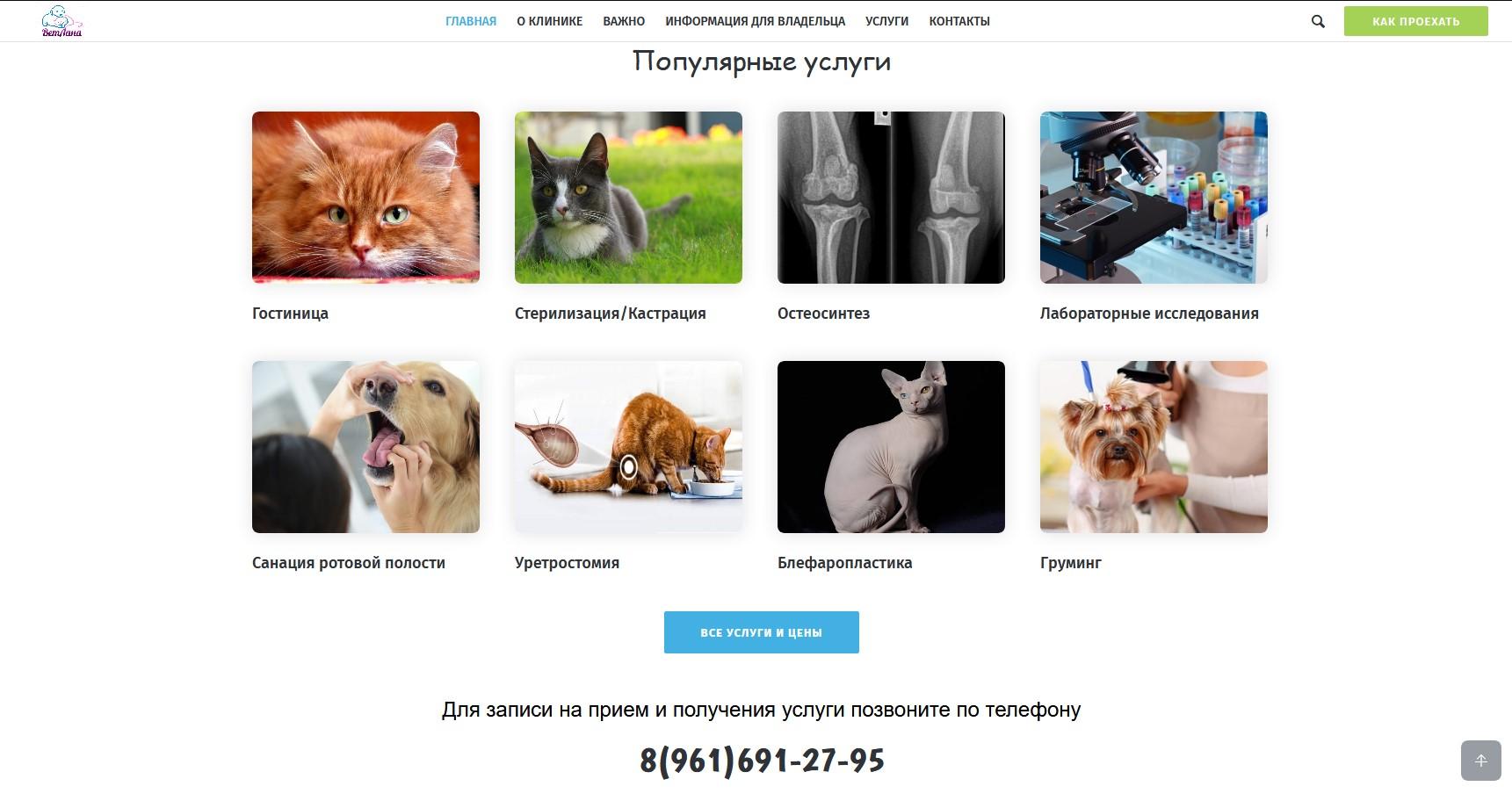 Портфолио: сайт ветеринарной клиники